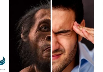 استرس ما را تبدیل به یک انسان اولیه می کند